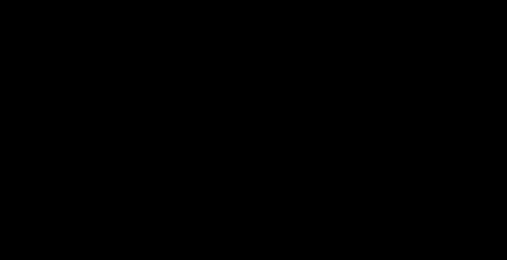 Banner MACHT FRIEDEN schwarz